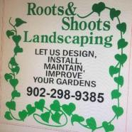 roots&shoots